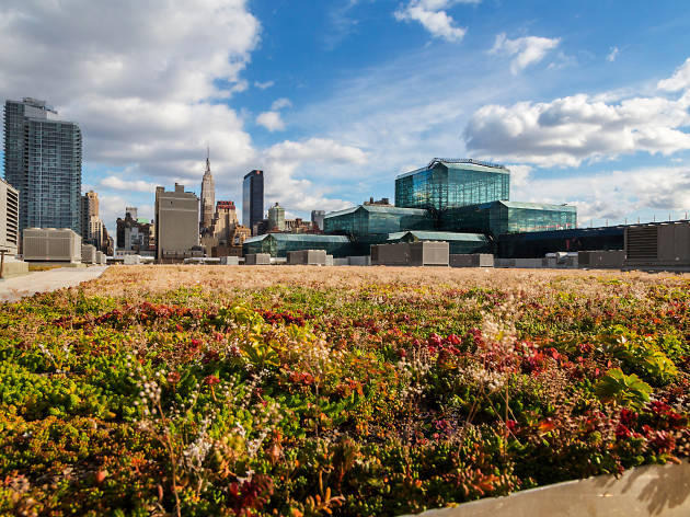 The Javits Center now offers free tours of its gorgeous rooftop garden