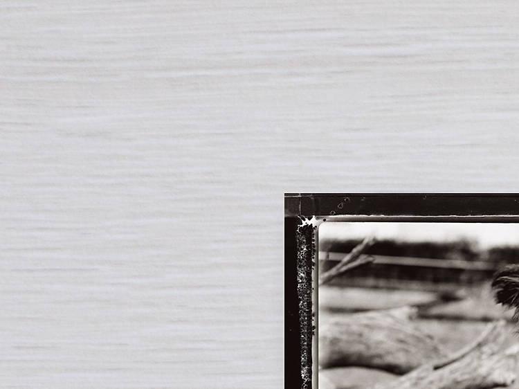 Icky Tump – The White Stripes