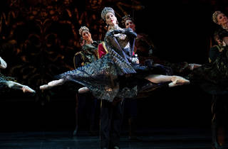 Nutcracker 3 (Photograph: Daniel Boud)
