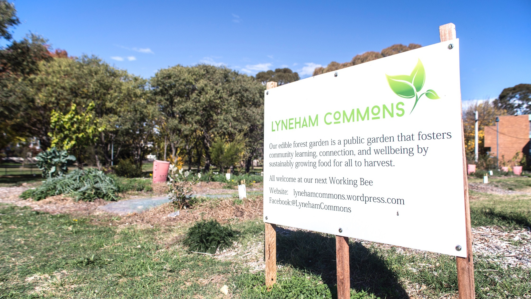 Lyneham Commons