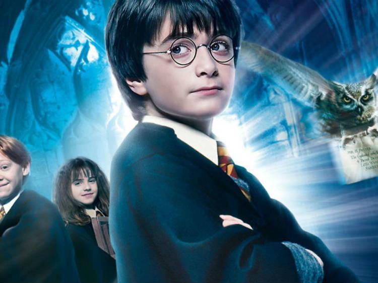 Leo, Luego existo Harry Potter (Lectura en voz alta)