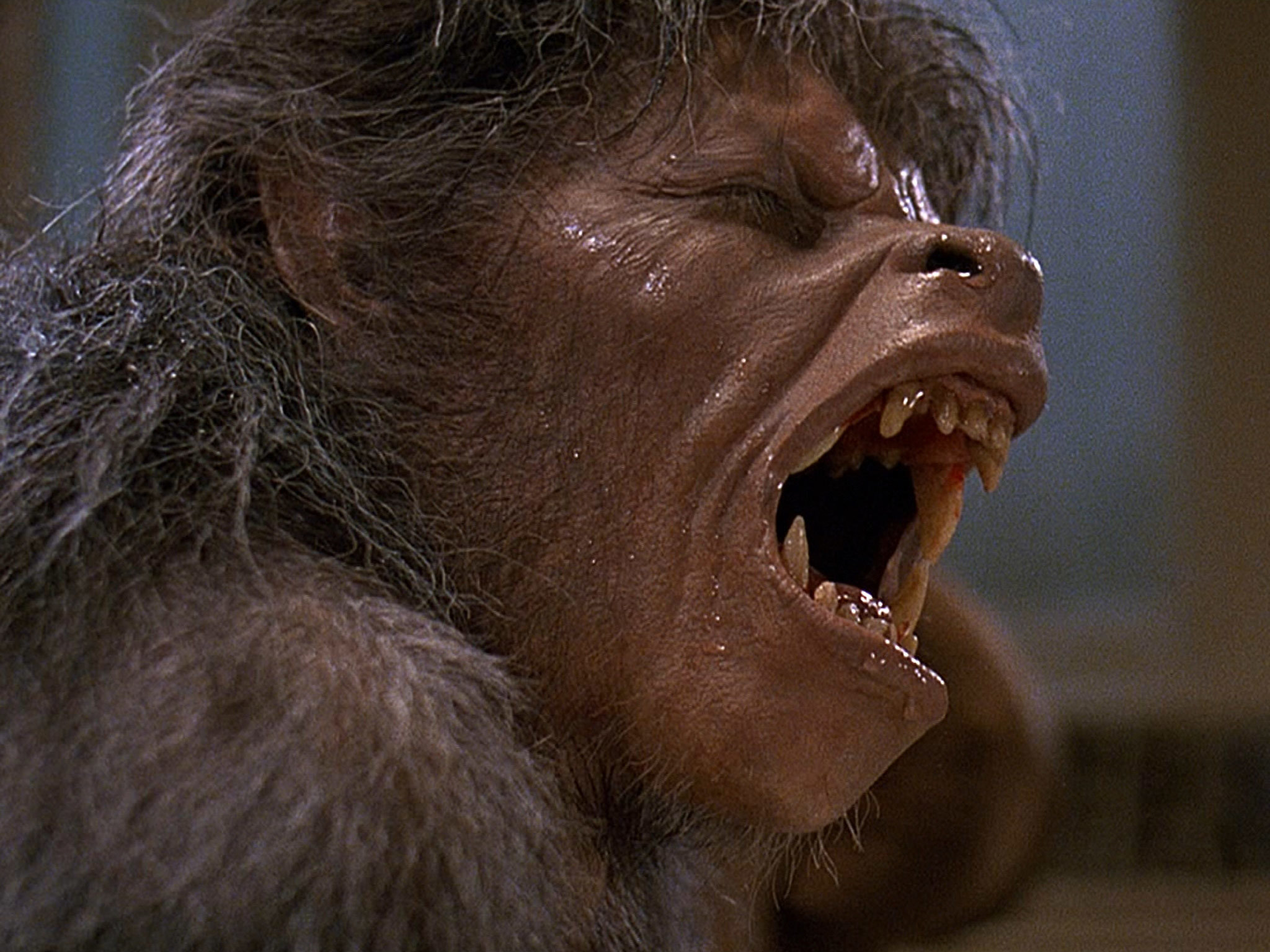 An American Werewolf in London at the Skyline Drive-in