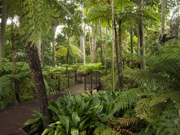 Get back to nature in the Royal Botanic Gardens