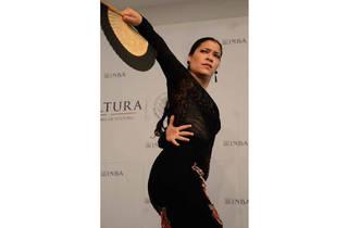 Gala de flamenco (Foto: Cortesía Instituto Nacional de Bellas Artes)