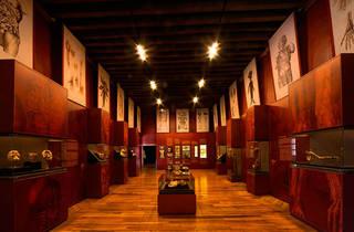 Mayo, Mes de Museos (Foto: Cortesía Palacio de la Escuela de Medicina)