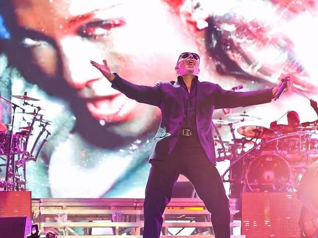 Pitbull live in Malaysia