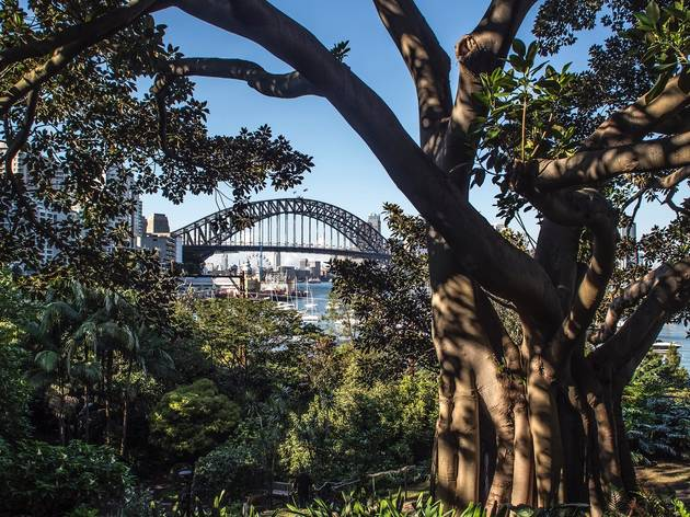 Free things to do in Sydney today