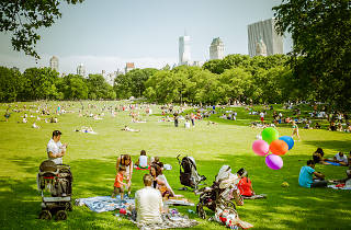 Best picnic spots in Central Park for a picturesque, outdoor meal | title | picnics central park