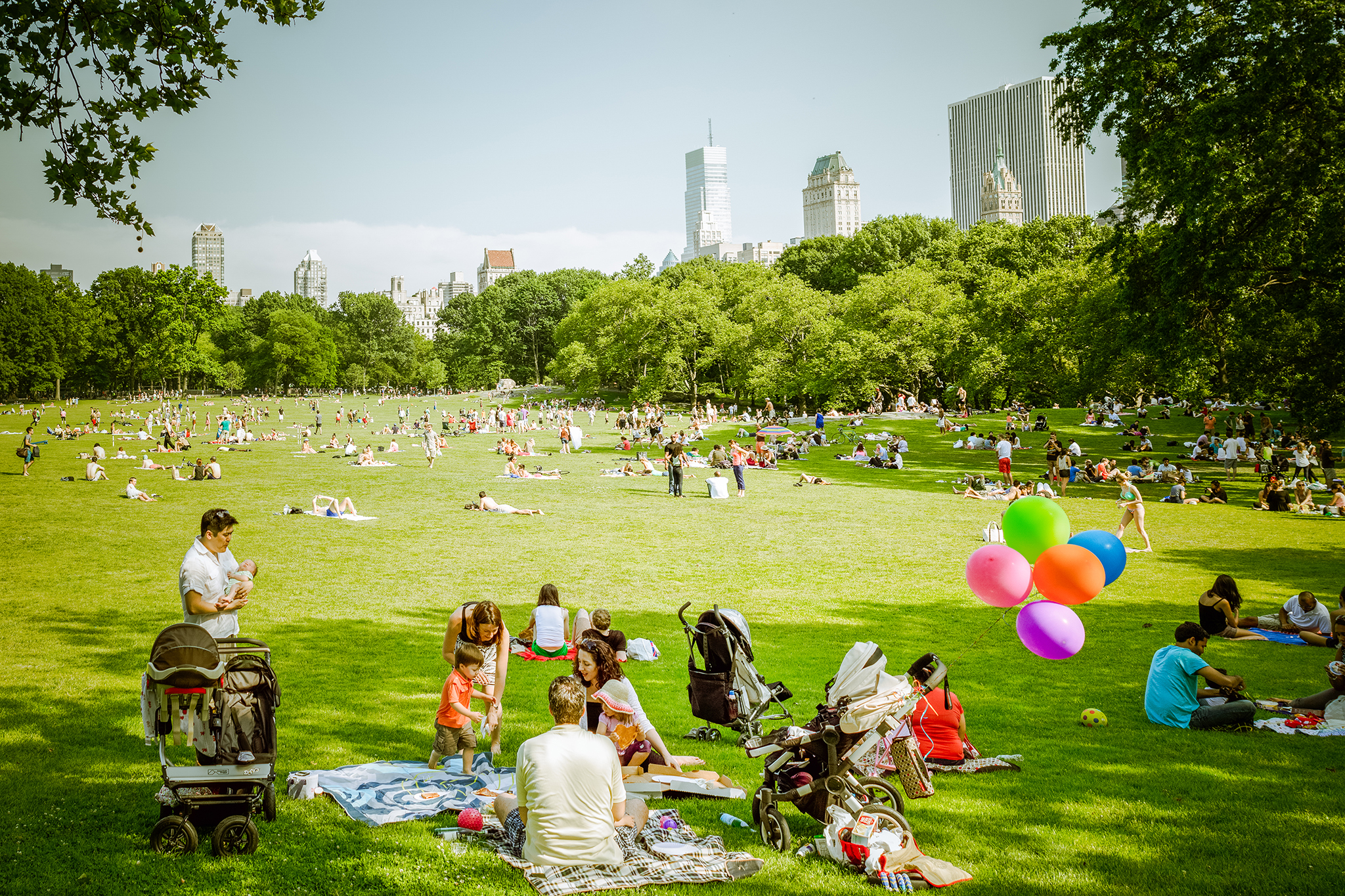 Best picnic spots in central park for a picturesque for Things to doin nyc