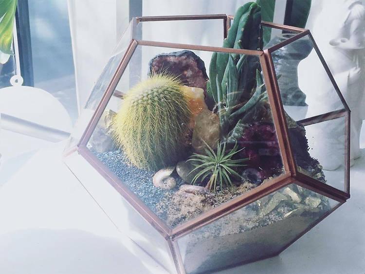 Build Your Own Terrarium Workshop at Slavonk & Hortus Terraria