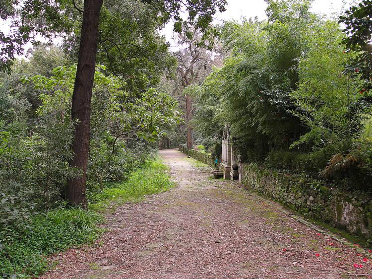 Jardins Nova Sintra