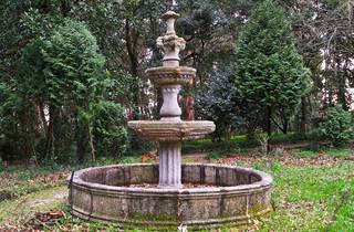 Nova Sintra Gardens