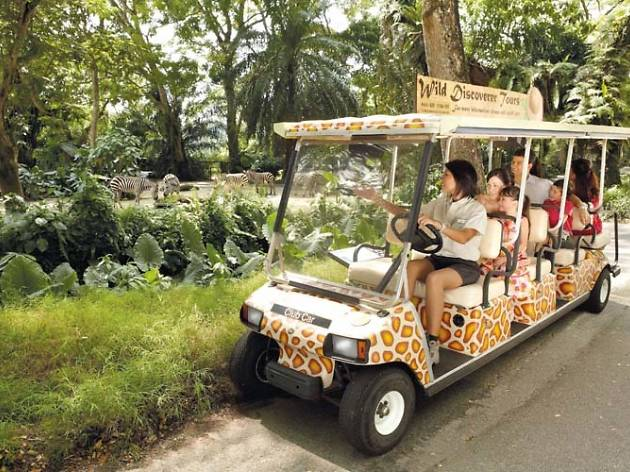 Six behind-the-scenes tours to check out in Singapore