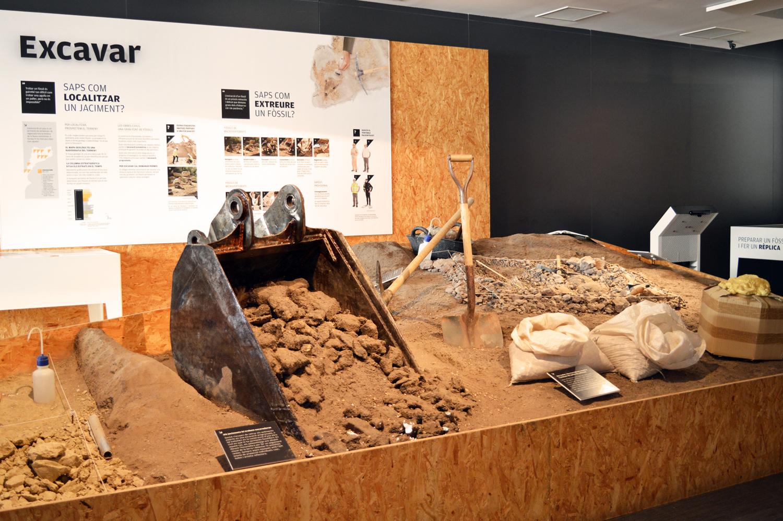 Museu de l'Institut Català de Paleontologia Miquel Crusafont