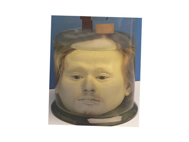 Ver a cabeça de um serial killer dentro de um jarro