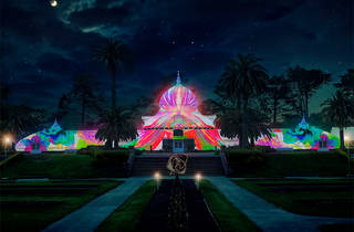 Summer of Love at the Conservatory of Flowers