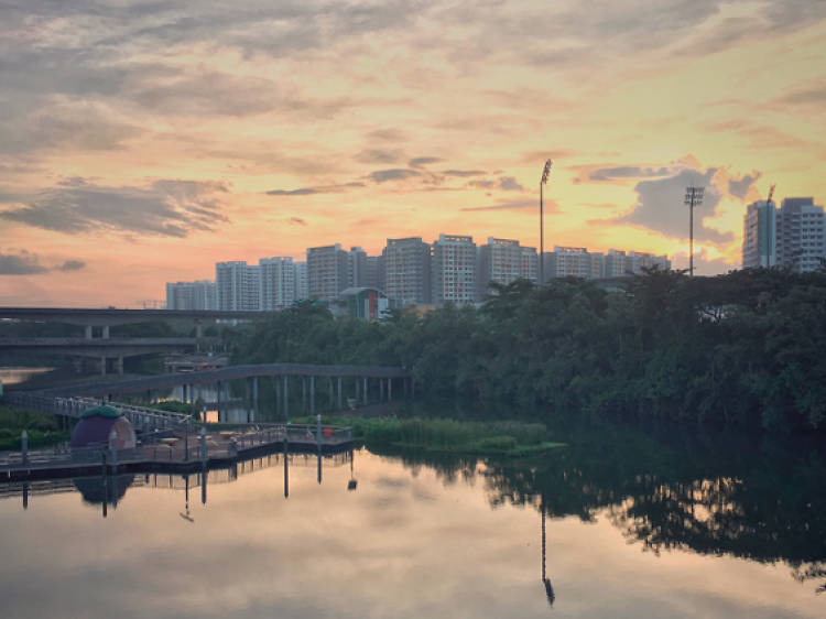 The ultimate guide to Seletar