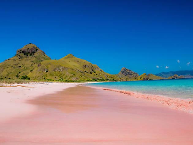 Pink Sand Beach - Bahames