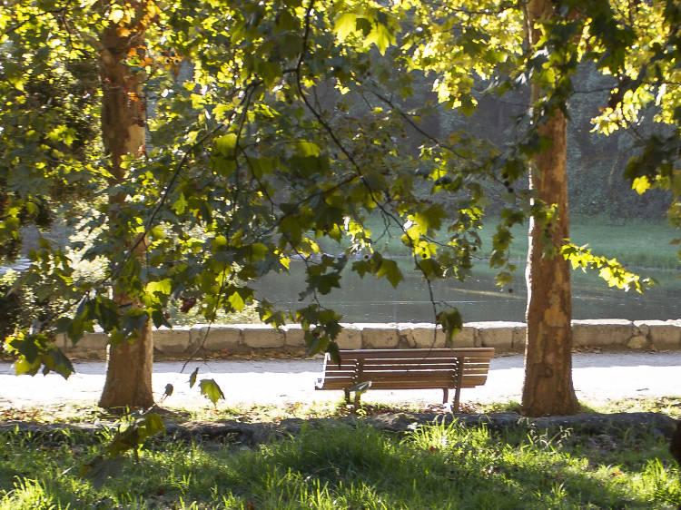 Breathe deep at the Parque da Cidade