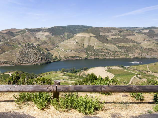 Doze sugestões sobre o que fazer no Douro