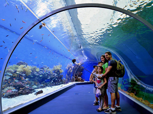 The top kid-friendly museums in Israel