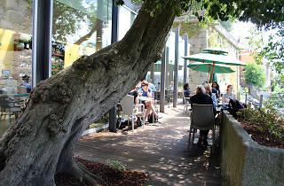 Árvore Restaurante