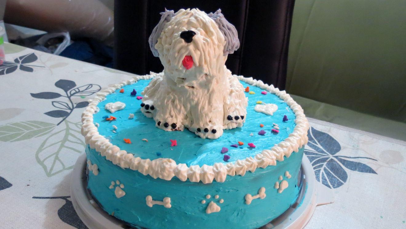 Pastelerías para perros