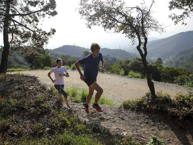 How To Trail Run