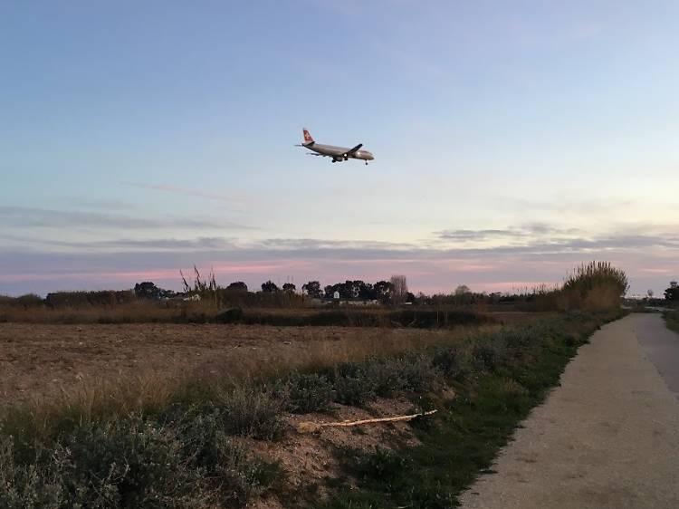 El Delta de Llobregat