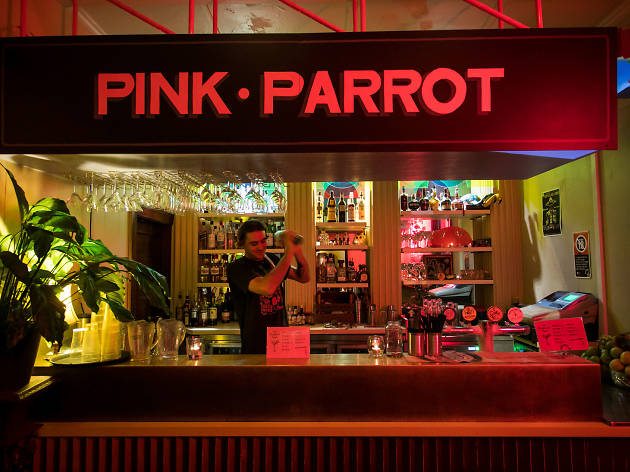 Pink Parrot at the Cricketers Arms