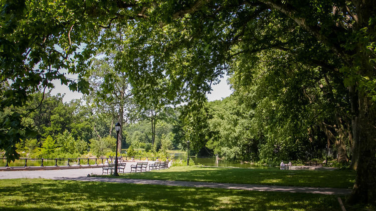 Watch films for free outside in Prospect Park this summer