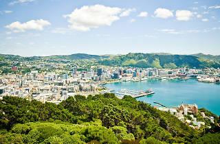 Wellington tourism NOBA