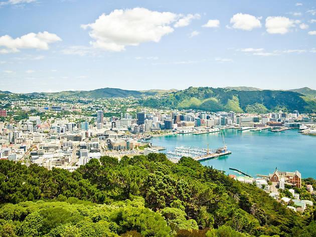 Explore Wellington like a local