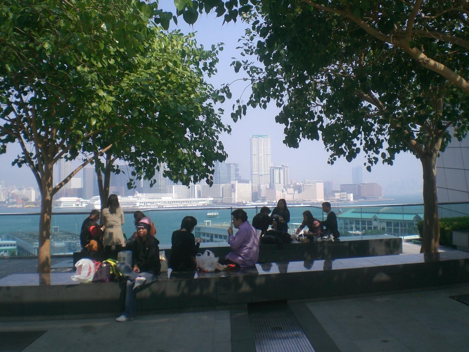 IFC Rooftop