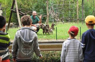 Zoo de Santo Inácio - Lemures