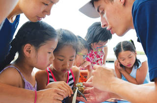 Hudson River Park Public Education Programs (Summer)