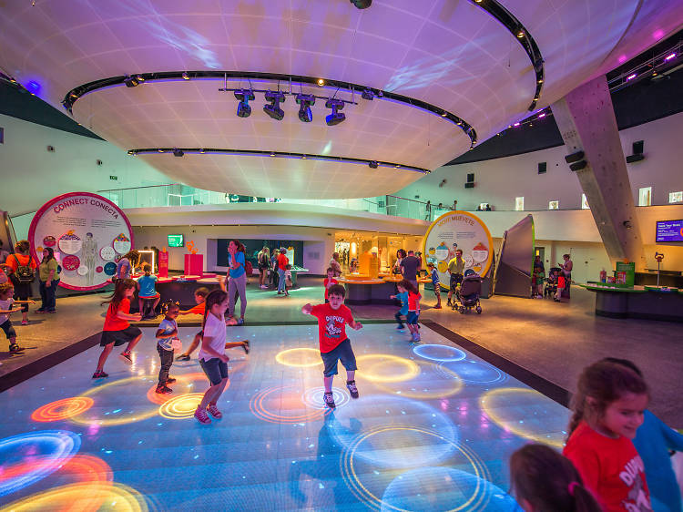 The 15 best things to do in Miami with kids