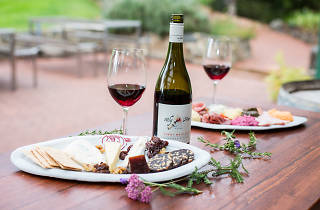 Canberra Wines