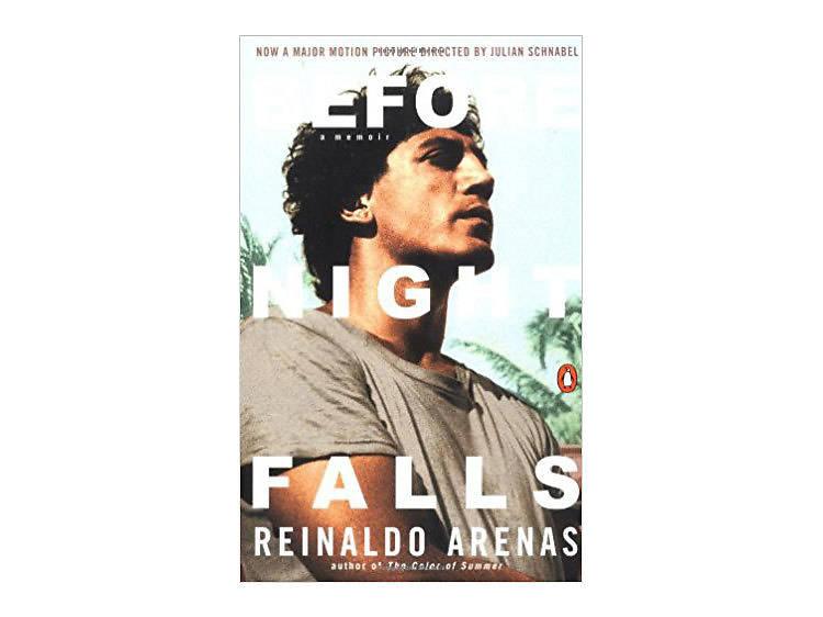 Before Night Falls: A Memoir by Reinaldo Arenas