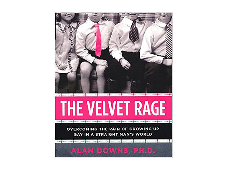 The Velvet Rage: Overcoming the Pain of Growing Up Gay in a Straight Man's World, Second Edition by Alan Downs