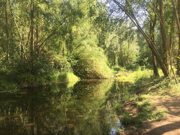 Platja fluvial del Ter