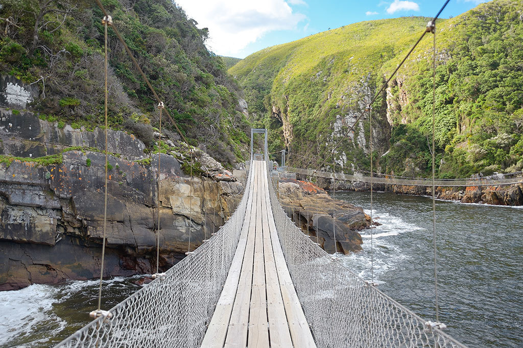 Take a road trip along the Garden Route