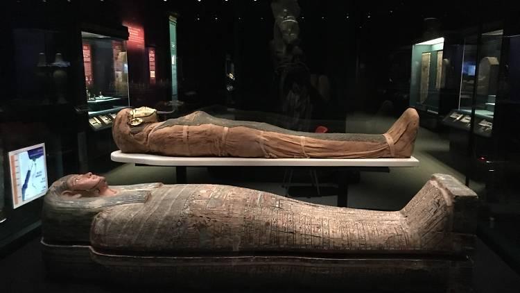 Eternal Life: Exploring Ancient Egypt