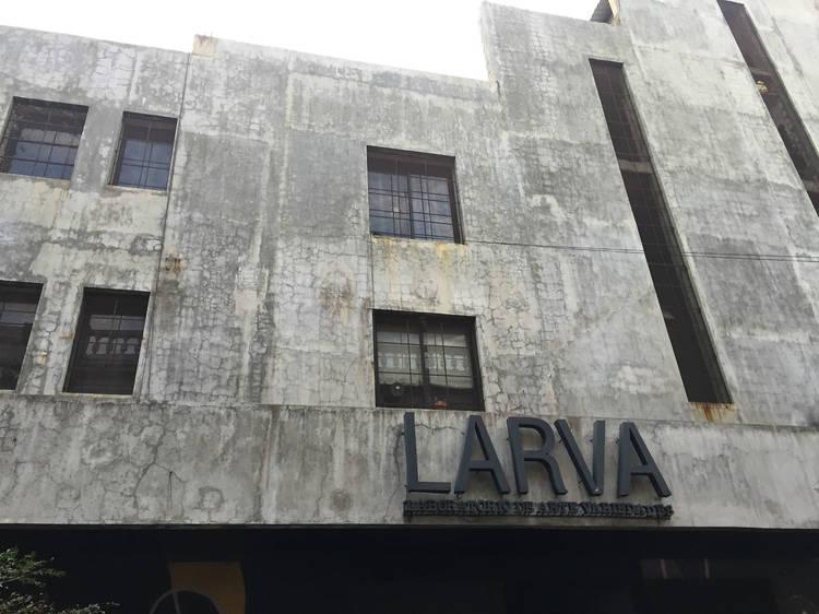 Laboratorio de Arte Variedades (LARVA)
