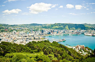 The view from Mount Victoria Lookout in Wellington, New Zealand