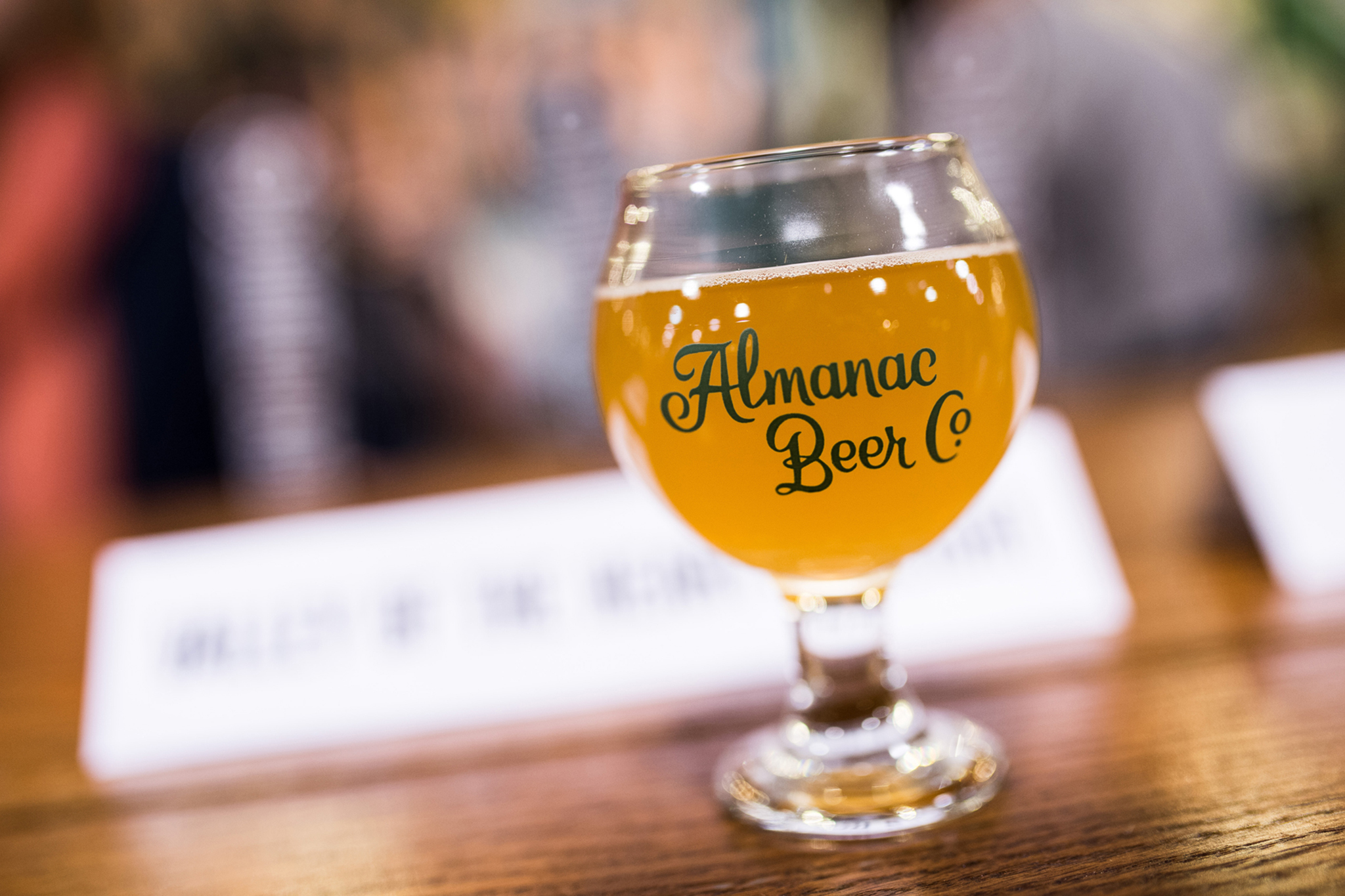 A beer at Almanac Taproom