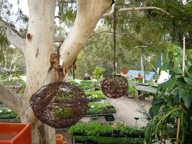 CERES Permaculture and Bushfood Nursery
