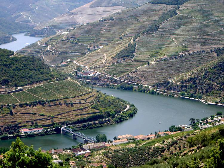 Oito coisas para fazer no Douro