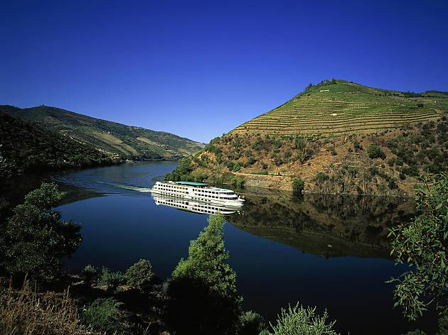 Douro Valley Small-Group Tour with Wine Tasting and lunch