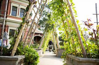 Ian Potter Foundation Children's Garden